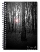 Sun Thru The Trees At Twilight Spiral Notebook