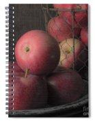 Sun Warmed Apples Still Life Square Spiral Notebook
