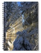 Sunbeam Spiral Notebook