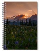 Sunbeam Garden Spiral Notebook