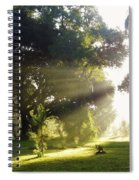 Sunbeam Landscape Spiral Notebook