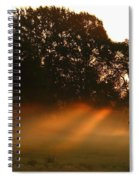 Sunbeams And Fog Spiral Notebook