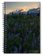 Sunbeams Over Rainier Spiral Notebook