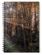Sunbreak Spiral Notebook