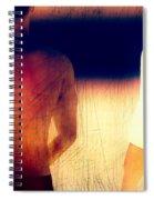 Sunburn Spiral Notebook