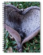 Sunburned Heart Spiral Notebook