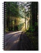 Sunburst At Redwood National Park Spiral Notebook