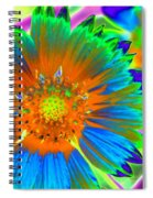 Sunburst - Photopower 2241 Spiral Notebook
