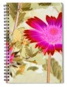 Sunburst - Photopower 2251 Spiral Notebook