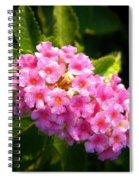 Sunday Morning Pink Spiral Notebook