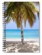 Sunday Palm Spiral Notebook