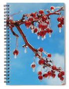 Sunday With Cherries On Top Spiral Notebook