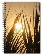 Sundown Through The Grass Spiral Notebook