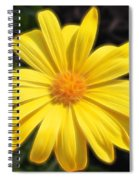 Sunflare Spiral Notebook