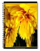 Sunflower Abstract 1 Spiral Notebook
