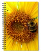 Sunflower And A Bee Spiral Notebook