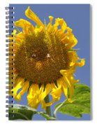 Sunflower At Latrun Spiral Notebook