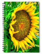 Sunflower Bloom Spiral Notebook