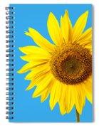 Sunflower Blue Sky Spiral Notebook