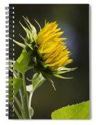 Sunflower Bright Side Spiral Notebook