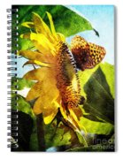 Sunflower Butterfly And Bee Spiral Notebook