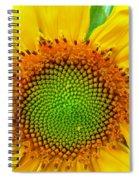 Sunflower Center Spiral Notebook