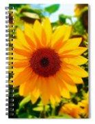 Sunflower Centered Spiral Notebook