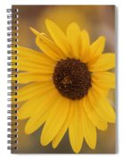 Sunflower Closeup Spiral Notebook