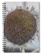 Sunflower Core Spiral Notebook