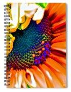 Sunflower Crazed Spiral Notebook