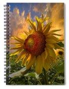 Sunflower Dawn Spiral Notebook