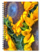 Sunflower Delight Spiral Notebook