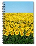 Sunflower Field, North Dakota, Usa Spiral Notebook