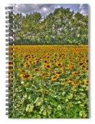 Sunflower Fields Ford World Headquarters Dearborn Mi Spiral Notebook