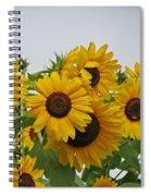 Sunflower Group Spiral Notebook