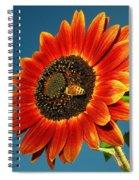 Sunflower Honey Bee Spiral Notebook