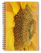 Sunflower Spiral Notebook