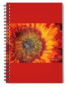 Sunflower Lv Spiral Notebook