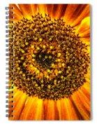 Sunflower Macro Spiral Notebook