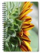 Sunflower Named The Joker Spiral Notebook