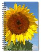 Sunflower Nirvana 30 Spiral Notebook