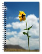 Sunflower On Route 66 Spiral Notebook