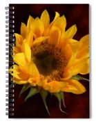 Sunflower Opening Spiral Notebook