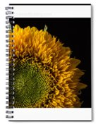 Sunflower Original Signed Mini Spiral Notebook