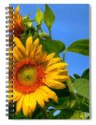 Sunflower Pair Spiral Notebook