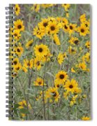 Sunflower Patch On The Hill Spiral Notebook
