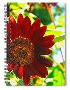 Sunflower - Red Blazer - Luther Fine  Art Spiral Notebook