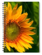 Sunflower Single Spiral Notebook