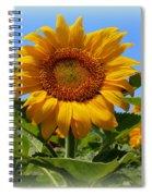 Sunflower Sunshine Spiral Notebook
