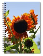 Sunflower Symphony Spiral Notebook